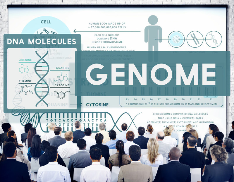 Wamberg Genomic Advisors advises employers, employee benefit brokers, and life insurance companies, enabling them to create programs that provide employees and policyholders with easy access to affordable genomic tests