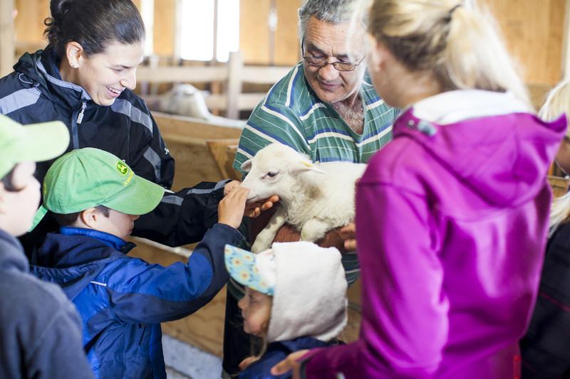 Le dimanche 10 septembre prochain se tiendra la 15e édition des Portes ouvertes sur les fermes du Québec sur plus de 100 fermes partout au Québec et au Parc olympique de Montréal. (Groupe CNW/Union des producteurs agricoles)