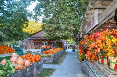 Enjoy hay rides, u-pick pumpkins, fresh pressed apple cider and so much more at the Avila Valley Barn along the CA HIghway 1 Discovery Route.