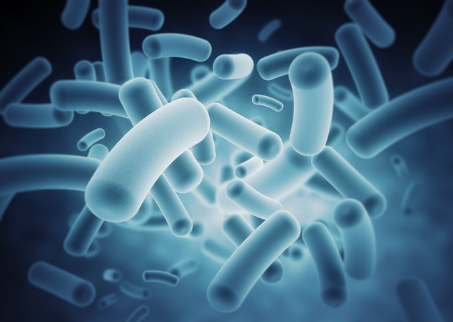 The Microbiome Immunity Project is the largest study to date of the bacteria in the human microbiome, starting with the gut. The project's goal is to help advance scientific knowledge of the role of these bacteria in disease. Photo credit: IBM