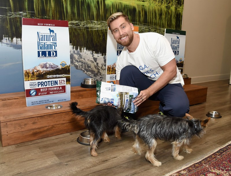 Lance Bass with Chip and Dale at Natural Balance Pet Foods announce new formula with Lance Bass and Downward Dogs - Literally - at The DEN Meditation on August 23, 2017 in Los Angeles, California.  (Photo by Michael Kovac/Getty Images for Natural Balance)
