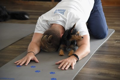 Lance Bass with his dog Dale at Natural Balance Pet Foods announce new formula with Lance Bass and Downward Dogs - Literally - at The DEN Meditation on August 23, 2017 in Los Angeles, California.  (Photo by Michael Kovac/Getty Images for Natural Balance)