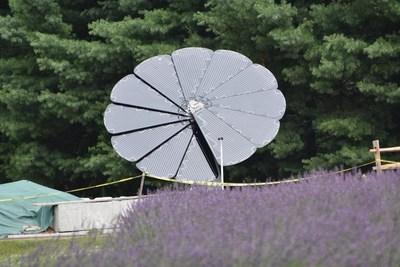 Solar SmartFlower blooms at Lavender Pond Farm, (Killingworth, CT)