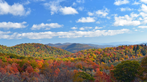 Biologists and NOAA weather experts are citing ideal conditions for a healthy and bright 2017 fall color show across the Blue Ridge Mountains and Asheville, an area known for one of the longest and most colorful fall foliage seasons in the world. The season will provide a colorful backdrop for hotel openings and many new outdoor and harvest food adventures. (Photo courtesy of FallintheMountains.com)