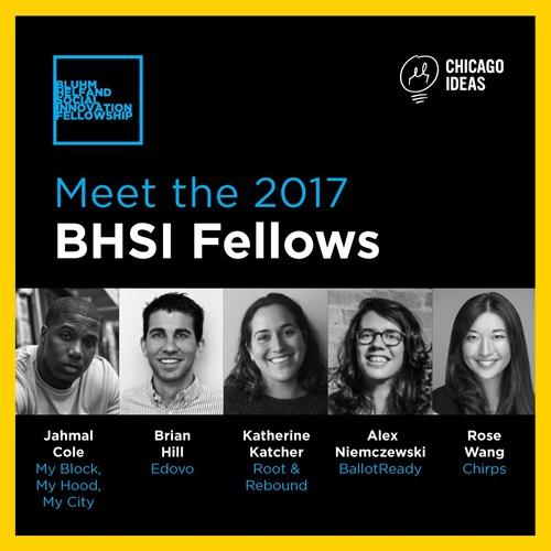 Meet the 2017 BHSI Fellows