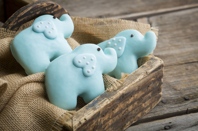Kneaders Bakery & Café is selling elephant-shaped sugar cookies in September to raise money for elephant-inspired childhood cancer research.