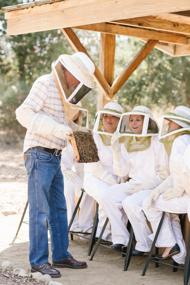 Just in time for National Honey Month, iconic Southern California escape Ojai Valley Inn & Spa announces the arrival of an on property apiary and launch of an immersive beekeeping experience for guests