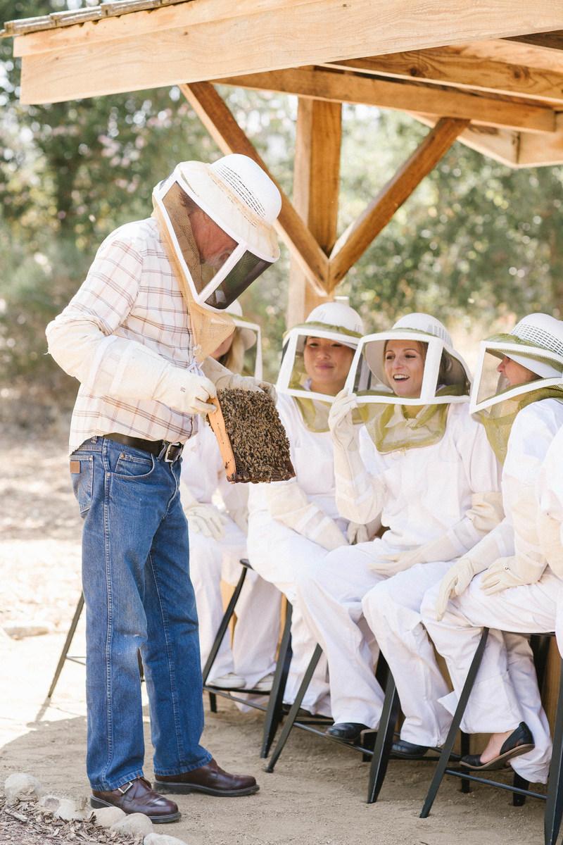 Luxury Hotels Ojai Valley Inn Spa: Ojai Valley Inn & Spa Unveils New Apiary And Beekeeping