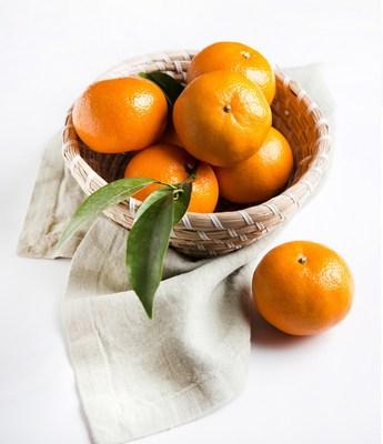Research: Consumers in Asia Prefer Jaffa Orri Mandarins (PRNewsfoto/Jaffa Orri)