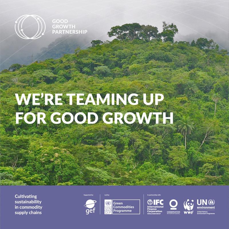 UNDP Green Commodities Programme