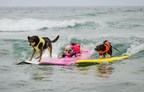 The 12th Annual Surf Dog Surf-A-Thon Gets Ready to Make a Splash