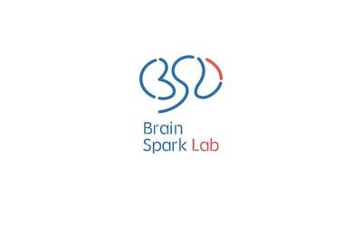 Brain Spark Lab logo