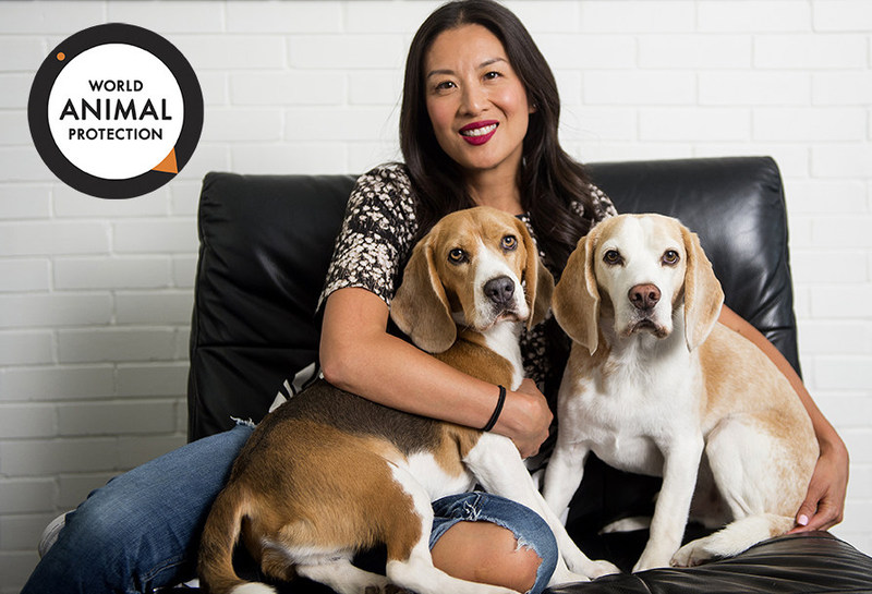 TV Personality Lainey Lui Joins World Animal Protection campaign to save millions of dogs around the world. (CNW Group/World Animal Protection)