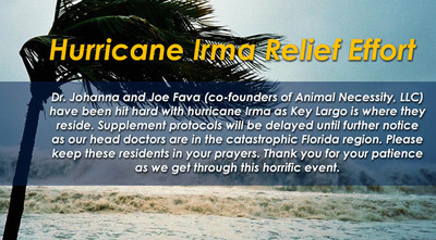 About Animal Necessity's Hurricane Irma Fundraiser
