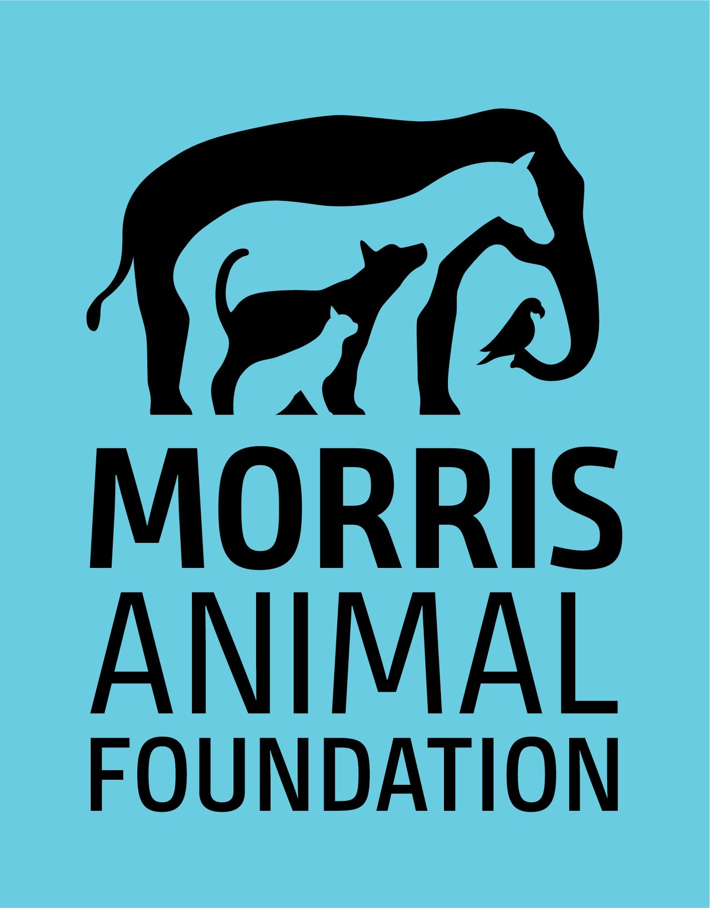 New Study Funded by Morris Animal Foundation Points to