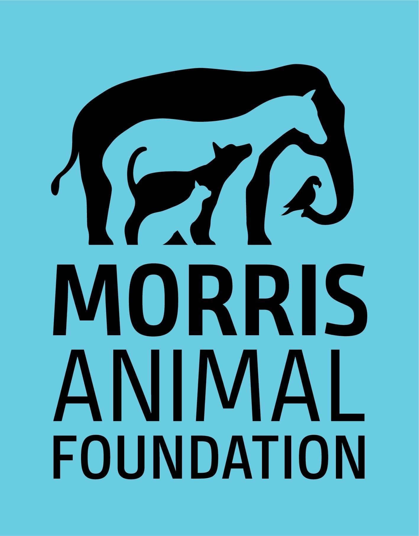 Morris Animal Foundation Logo (PRNewsfoto/Morris Animal Foundation)