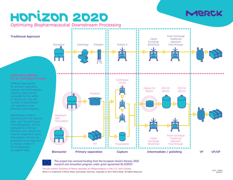 Merck_Horizon_2020_Infographic