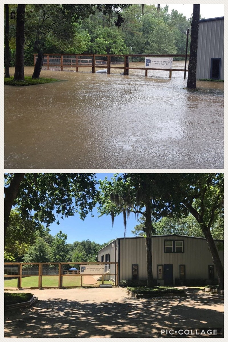 Before and After Pictures of Hurricane Harvey Flood