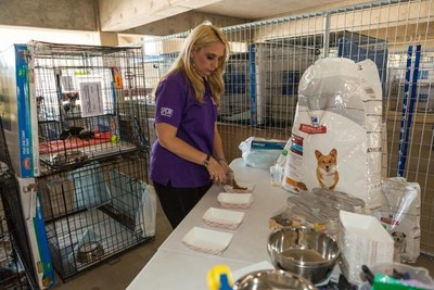 An SPCA of Texas staff member distributes pet food at the temporary shelter in Dallas, TX.