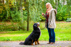 Dos and Don'ts for a Well-Behaved Pet (CNW Group/Canadian Animal Health Institute)