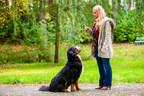 Les choses à faire et à ne pas faire pour un animal bien élevé! (Groupe CNW/Institut canadien de la santé animale)