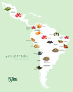 The nature of Latin America in Fruittion Botanicals