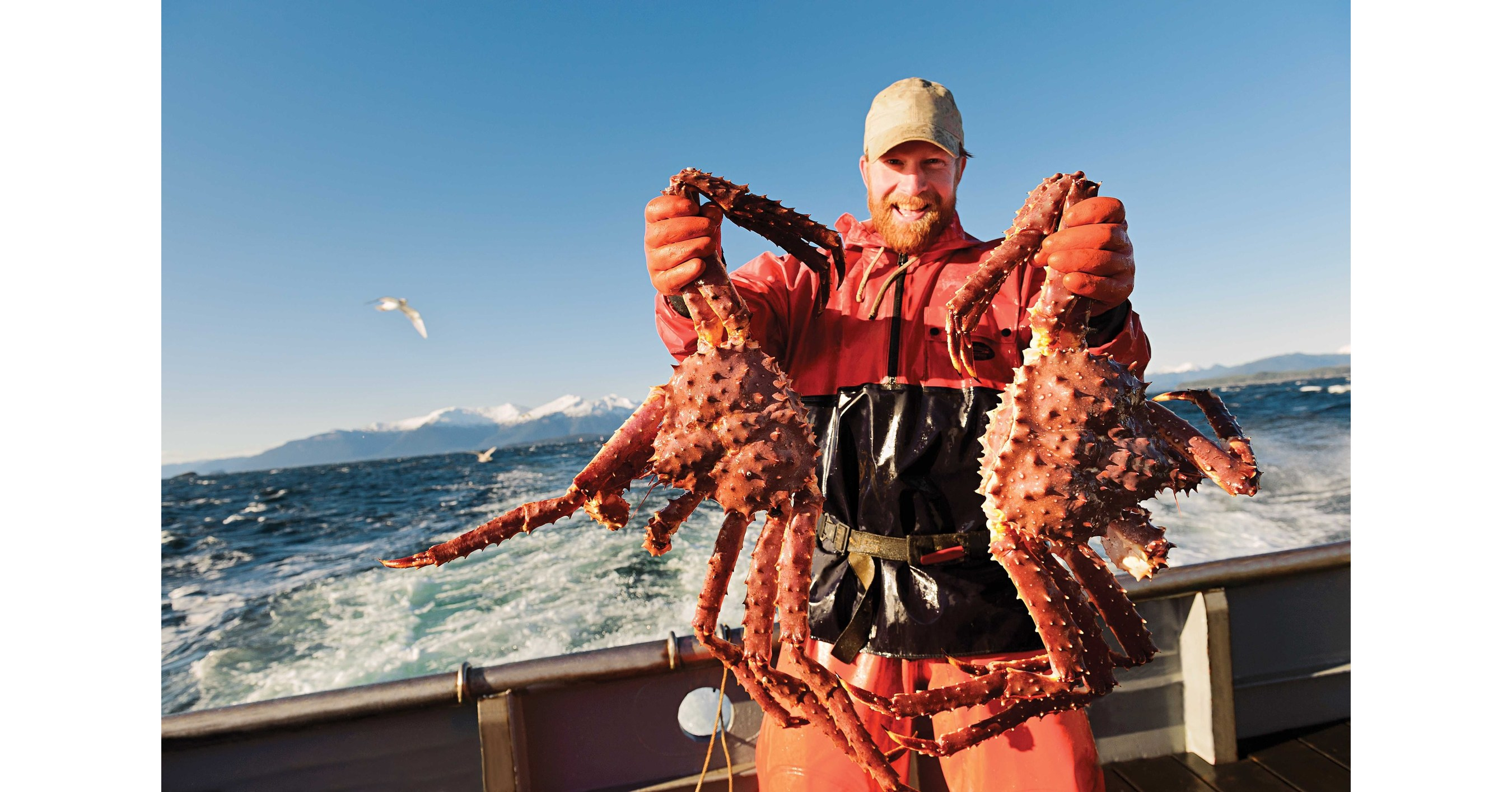 Alaska Crab Season Kicks Off With Harvest Opener