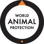 World Animal Protection applauds Nestlé USA on its commitment to improve welfare of broiler chickens