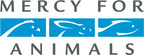 Mercy For Animals Applauds Progress As Nestlé USA Announces Critical Improvements To Animal Welfare Policy