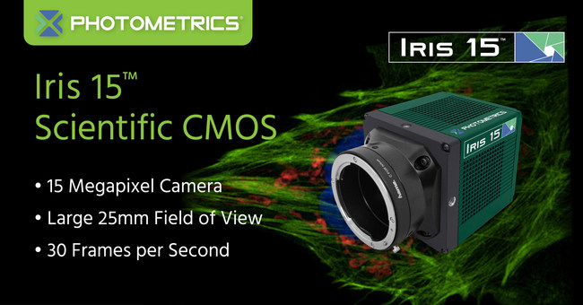 Photometrics Iris 15 Scientific CMOS Camera: 15 Megapixel, Large 25mm Field of View, 30 Frames per Second and Amazing Image Quality