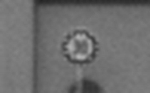 Distant sample image comparison: IMX224 (1.27M) magnified image