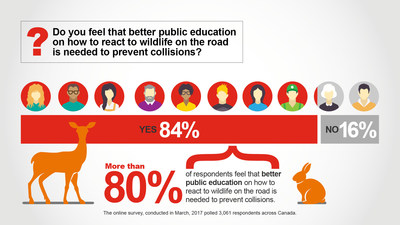 Do you feel that better public education on how to react to wildlife on the road is needed to prevent collisions? (CNW Group/State Farm)