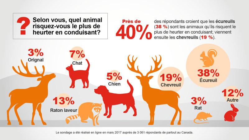 Selon vous, quel animal risquez-vous le plus de heurter en conduisant? (Groupe CNW/State Farm)