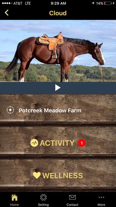 StableGuard mobile app screenshot showing activity alert for horse named Cloud.