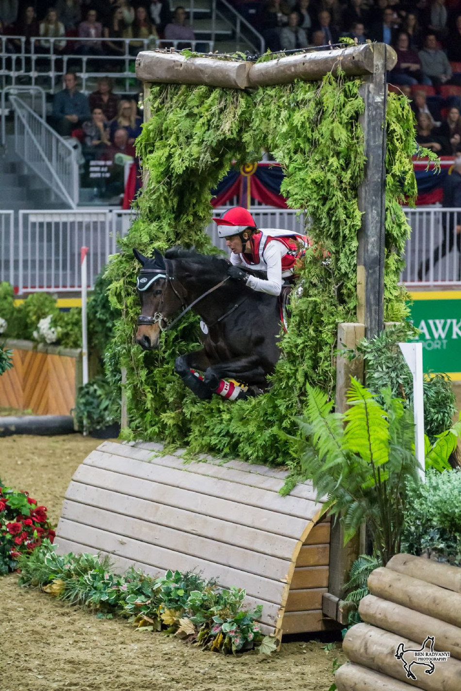 Canadian Olympian Selena O'Hanlon of Kingston, ON, will contest the $20,000 Horseware Indoor Eventing Challenge on November 3 and 4 at the Royal Horse Show, held as part of the 95th annual Royal Agricultural Winter Fair running from November 3 through 12 in Toronto, ON. Photo by Ben Radvanyi Photography (CNW Group/Royal Agricultural Winter Fair)