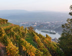 National Geographic and Scenic Announce River Cruise Partnership
