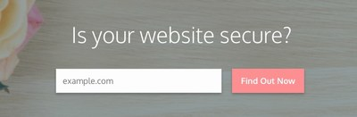 Lovingly Secure Website Checker