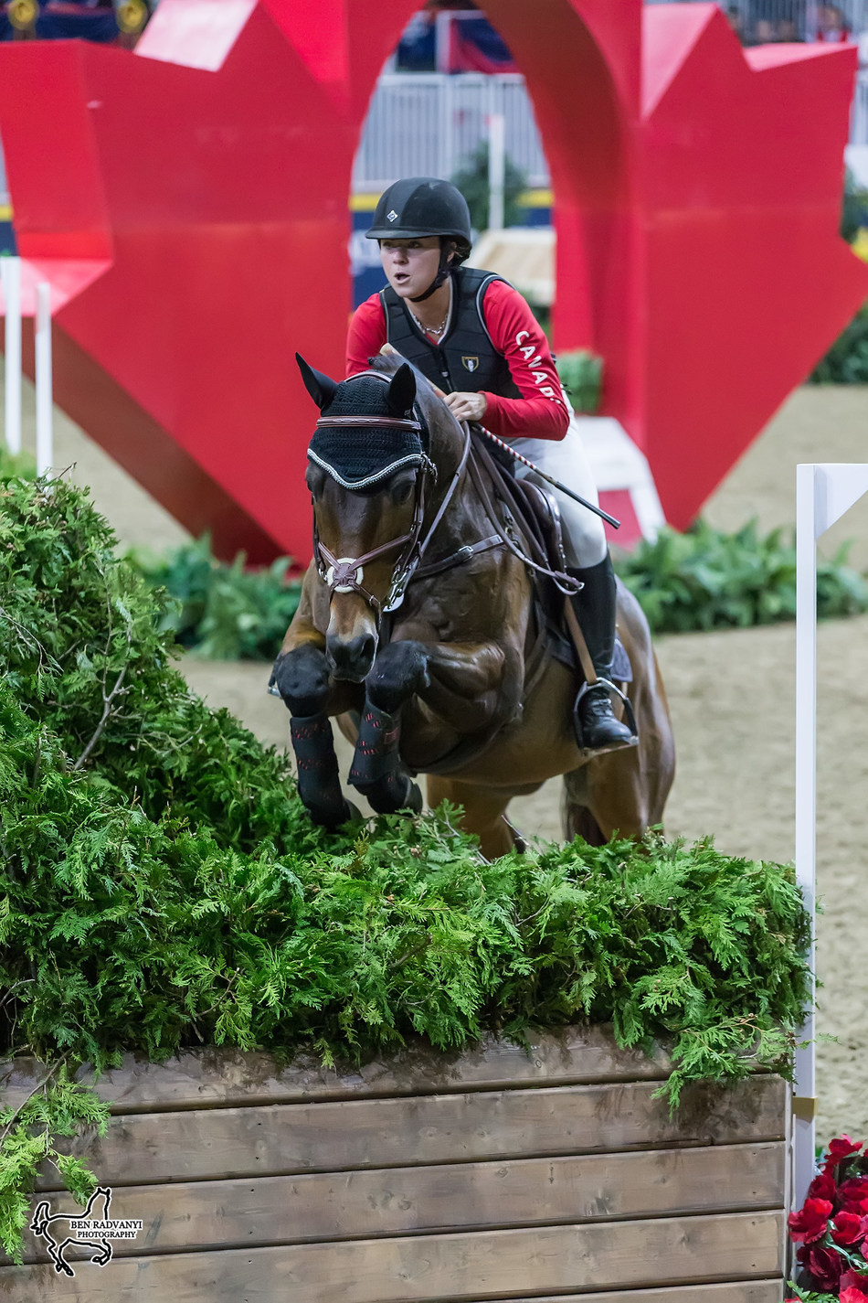Rachel McDonough of Toronto, ON, leads the $20,000 Horseware Indoor Eventing Challenge after topping the first phase of competition riding Irish Rhythm on Friday, November 3, at Toronto's Royal Horse Show. Photo by Ben Radvanyi Photography (CNW Group/Royal Agricultural Winter Fair)