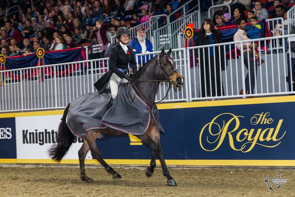 Darcy Hayes of Aurora, ON, rode Say When to a second consecutive victory in the $15,000 Braeburn Farms Hunter Derby for owner Danielle Trudell-Baran on Sunday, November 5, at the Royal Horse Show in Toronto, ON. Photo by Ben Radvanyi Photography (CNW Group/Royal Agricultural Winter Fair)
