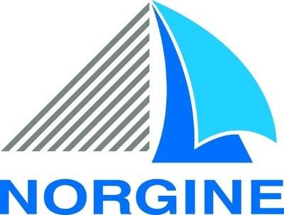 Norgine Logo