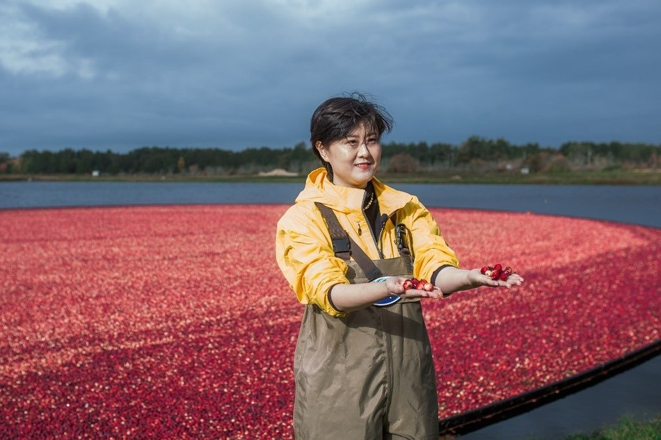 NetEase Kaola CEO Lily Lei Zhang visits a cranberry farm in Carver, Massachusetts which supplies cranberries to Ocean Spray. Zhang signed a partnership agreement with Ocean Spray to bring the iconic cranberry products to China during her visit to the U.S. in late October.