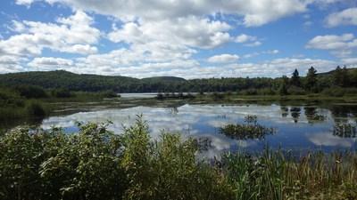 La baie Trou à Barbotte (Groupe CNW/Fondation Hydro-Québec pour l'environnement)