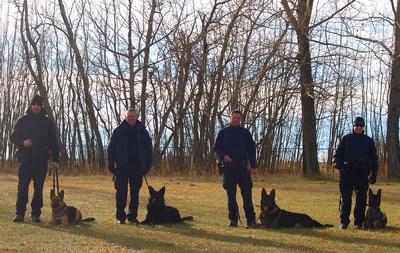 Les quatre premières équipes cynophiles de la GRC formées pour détecter les restes humains. De gauche à droite : le caporal Andrew Tarala avec Genie de Brandon en Ontario, le gendarme Brian Veniot avec Doc de Halifax en Nouvelle-Écosse, le caporal Jesse Gawne avec Ejay de Lethbridge en Alberta, le sergent d'état-major Joël Leblanc avec Henny de Surrey en Colombie-Britannique. (Groupe CNW/Gendarmerie royale du Canada)