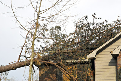 If a tree falls on your house, take photos, then call your claims adjuster, who will evaluate the damage and explain your homeowners coverage.