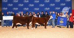 Beef Supreme 2017 (Female) (CNW Group/Royal Agricultural Winter Fair)