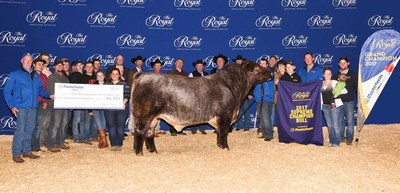 Beef Supreme 2017 (Bull) (CNW Group/Royal Agricultural Winter Fair)