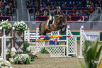 Daniel Bluman of Israel won the $35,000 International Jumper Power and Speed on Tuesday, November 7, to kick off international show jumping competition at the CSI4*-W Royal Horse Show in Toronto, ON. Photo by Ben Radvanyi Photography (CNW Group/Royal Agricultural Winter Fair)