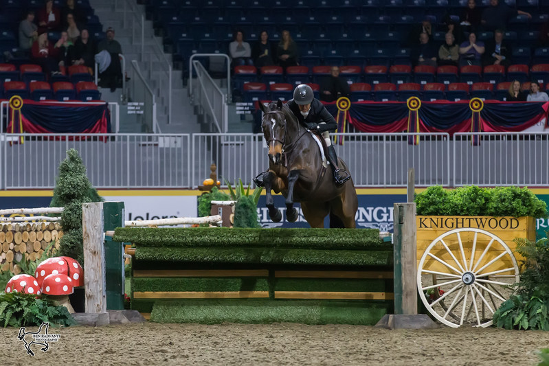 Darcy Hayes of Aurora, ON, finished in second riding Say When, owned by Danielle Trudell-Baran. Photo by Ben Radvanyi Photography (CNW Group/Royal Agricultural Winter Fair)