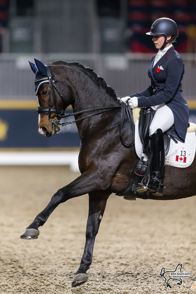 Canadian Olympian Megan Lane of Collingwood, ON, and Caravella won the $20,000 Royal Invitational Dressage Cup, presented by Butternut Ridge, for the second year in a row on Thursday, November 9, at the Royal Horse Show in Toronto, ON. Photo by Ben Radvanyi Photography (CNW Group/Royal Agricultural Winter Fair)