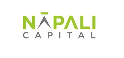 Napali Capital Logo